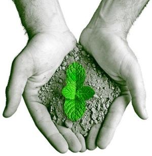 mestrado a distancia em direito ambiental