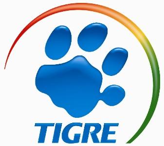 vagas de trainee tigre 2010
