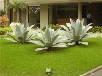 Paisagismo-e-Jardinagem-RJ