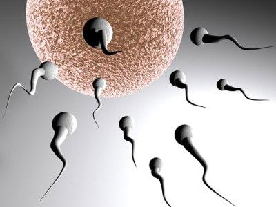 tratamento gratuito de infertilidade