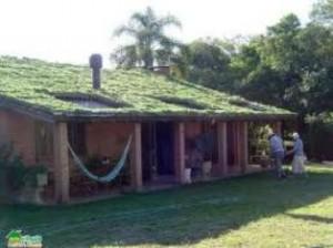 Casa com teto verde