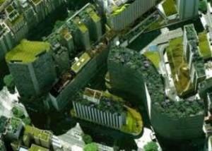 Cidade com tetos verdes