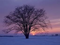 protetor-solar-no-inverno