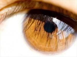 Maquiagem para Destacar Olhos Cor de Mel 1 300x225 Maquiagem para Destacar Olhos Cor de Mel